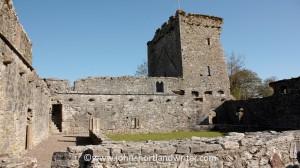 Castlelyons (2)   copyright