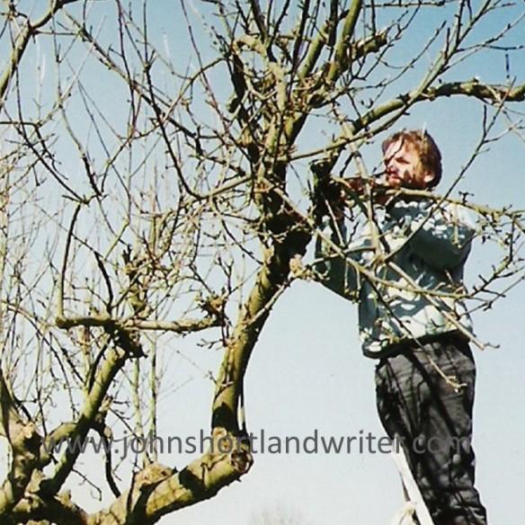 Pruning watermark