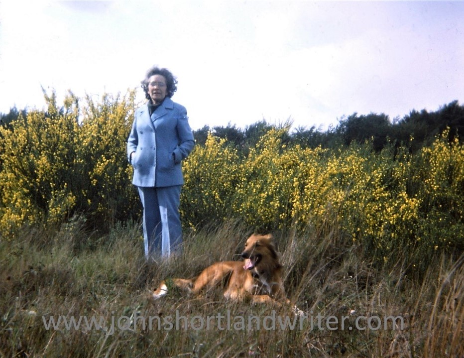 RAE BLOOM WOODS 1976 watermark